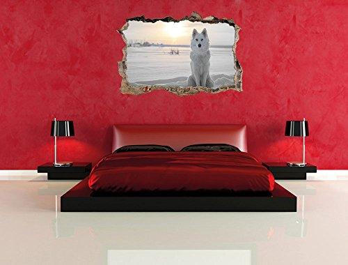 autoadesivi della parete Lupo bianco sulla neve B /& W dettagli/svolta a muro in look 3D parete o formato adesivo porta: 62x42cm decorazione della parete autoadesivo della parete
