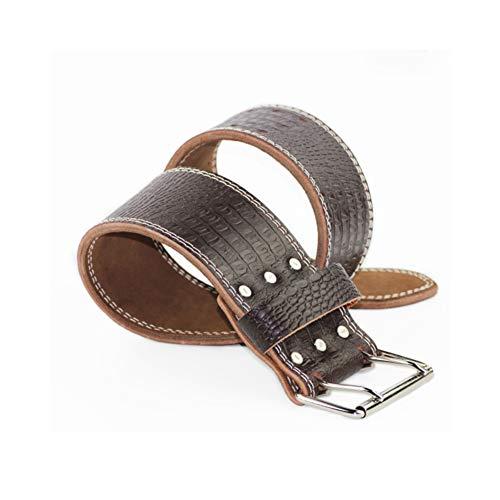 TZTED Leather Weight Lifting Belt Padded Lumbar Back Support Trainingsgürtel Powerlifting Gym Weightlifting Belt Krafttraining,S(57~77cm)
