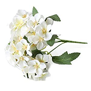 NAttnJf 1 Unid Flor Artificial Begonia Home Garden Wedding Arrangement Party Office Hoel DIY Decoración Purple
