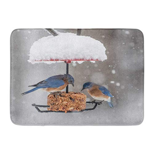 KENTONG Hill Bath Mat Perching Blue Winter Bluebirds on Bird Feeder During Snowfall Eating Nature Bathroom Decor Rug 15.7