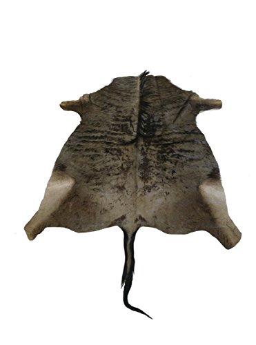Zerimar Alfombra piel de antilope ñu azul africano o wildebeest Medidas: 180x150 cms Ideal para decoracion en salones o dormitorios