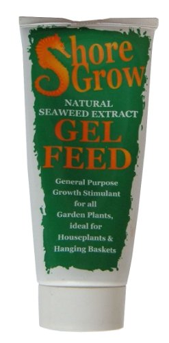 shore-grow-gel-feed-175ml-natural-seaweed-extract-general-purpose-growth-stimulant-for-all-garden-pl