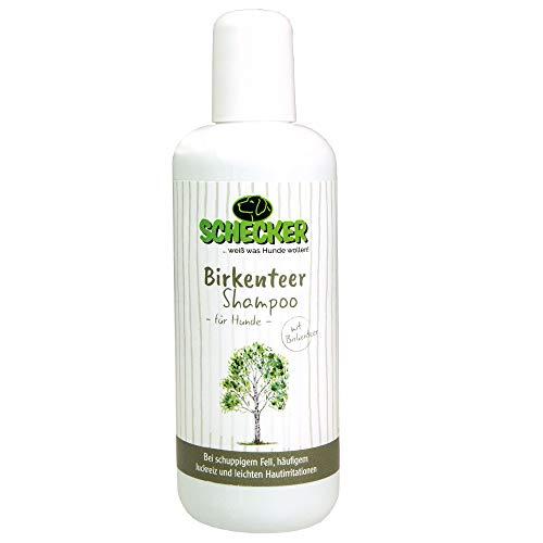 Seidig-schuppen-shampoo (Gelavet Schecker Birkenteer Shampoo bei Juckreiz und Schuppen)
