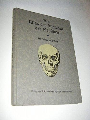 Atlas der Anatomie des Menschen. Beschreibung des menschlichen Körpers und der Tätigkeit seiner Organe. Für Schule und Haus bearbeitet.
