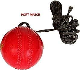 Triqer Leather Practice Hanging Cricket balls
