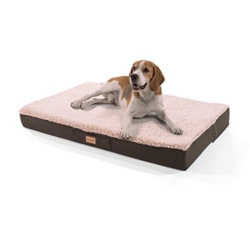 brunolie Balu extra großes Hundebett in Beige, waschbar, orthopädisch und rutschfest, kuscheliges Hundekissen mit atmungsaktivem Memory-Schaum, Größe XL (120 x 72 x 10 cm) -