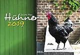 Hühner 2019: Der Sympathische Hühner-Kalender mit den charmanten Namen