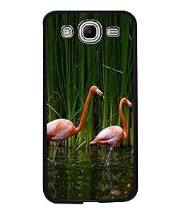 PrintVisa Designer Back Case Cover for Samsung Galaxy Mega 5.8 I9150 :: Samsung Galaxy Mega Duos 5.8 I9152 (Wild Crane Couple In Water Green)