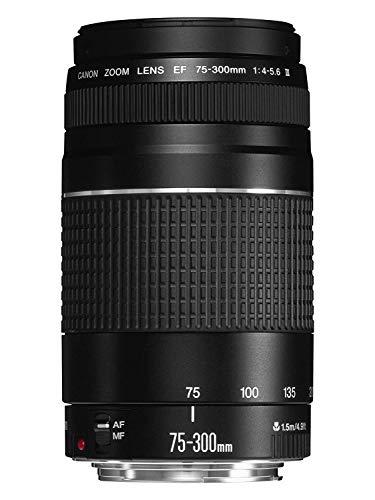 Canon EF 75-300mm f/4-5.6 III Objektiv (58mm Filtergewinde)