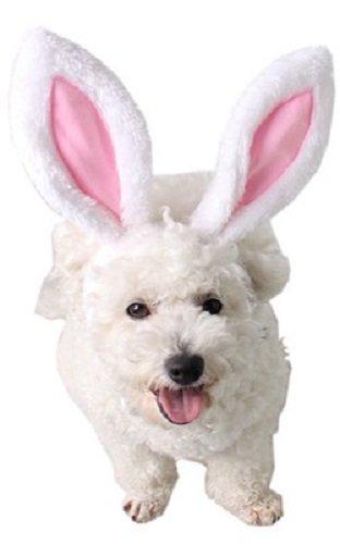 Fancy Me Haustier Mädchen Hund Katze Osterhase Ohren Stirnband Haarband Kostüm Kleid Outfit Zubehör - Medium (Osterhase Kostüm Mädchen)