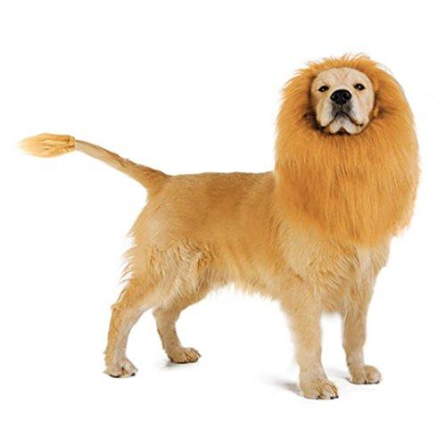 XINXINYU Pet Löwenkopf mit hellbraun,Lion Mähne für Hund Kostüm mit Geschenk Lion Tail Lion Perücke für Hund