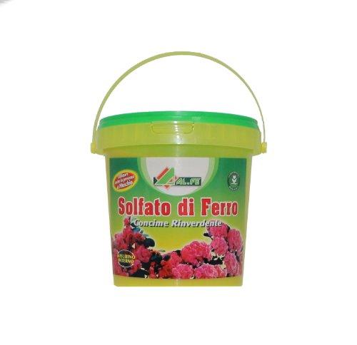 fer-engrais-de-sulfate-pres-decologisation-des-fleurs-et-des-plantes-1-kg