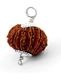 Amorfos 11 Mukhi/Faced Rudraksha Pendant With Silver Coated Capping And Lab Certificate, Nepal Originated Rudraksh...
