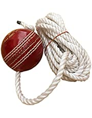 Tima Leather Cricket Shot Practice Hanging Ball, String Multicolor