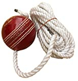 #8: Tima Leather Cricket Shot Practice Hanging Ball, String MultiColor