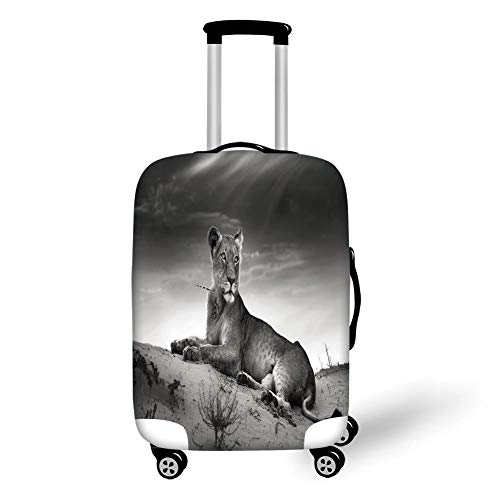 Travel Luggage Cover Suitcase Protector,Black and White Decorations,Wild Lioness on Desert Dune African Animal Safari Image,Black White Grey,for Travel,L - Dunes Club