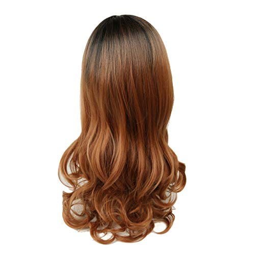 Schwarze Frauen natürliche Perücke langes gelocktes Haar synthetische Perücke Mode Kostüm Perücken