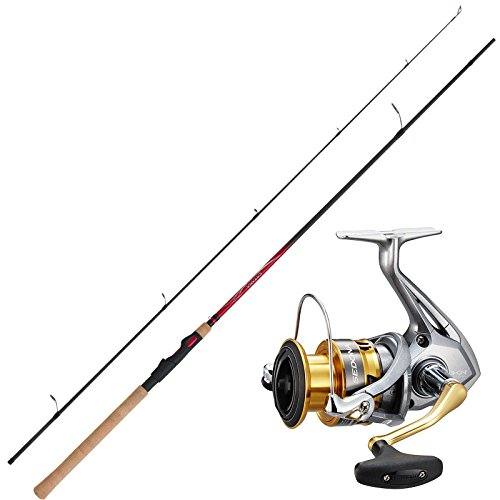 SHIMANO Angelset Hecht Spinnangeln Angelrute Angelrolle Combo No1