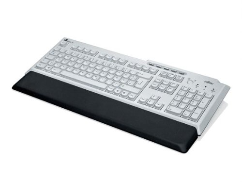 FUJITSU Tastatur Professional USB Bright Light Grey/Black Handballenauflage 5 Komfort Tasten Power on Key USB Kabel 2m inklusive bla -