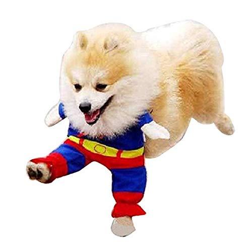 CHUANG TIANG Pet Kostüm Helden Und Bösewichte Sammlungs-Haustier-Kostüm-Superman Comics Superman Pet Cape Mit Bruststück (Comic Bösewichte Kostüm)