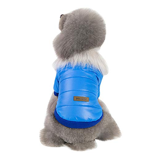 Fenverk Katze Hund Mantel Jacke Haustier VorräTe Kleider Winter Bekleidung HüNdchen KostüM Weste Sweatshirt T-Shirt Warm Mit Kapuze Vlies Zum Klein Mittel Groß Herbst(Blau,XXL)