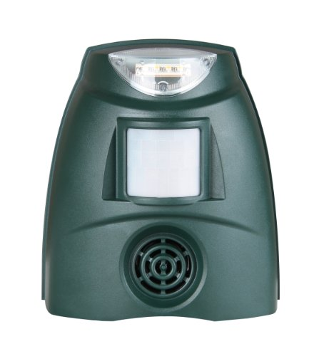 pestbye-repelente-ultrasonico-de-pajaros-con-luz