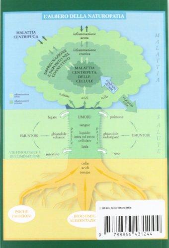 Zoom IMG-1 l albero della naturopatia