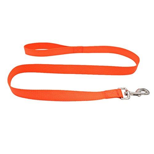 Yuncai Haustier Hund Brustgurt Geschirr Einfach Atmungsaktiv Gemütlich Leine Orange2 M