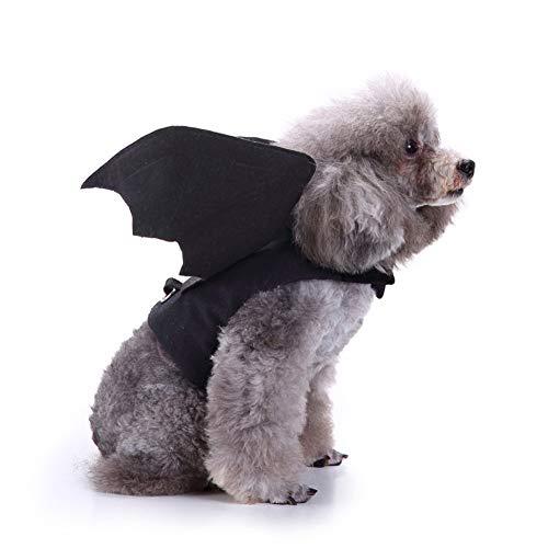 Queta Haustierkostüm, Flügel, für Halloween-Partys, Cosplay, Fledermaus-Kostüm, süßes Katzen-Zubehör