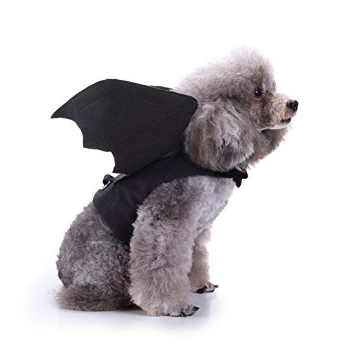 Queta Haustierkostüm, Flügel, für Halloween-Partys, Cosplay, Fledermaus-Kostüm, süßes ()