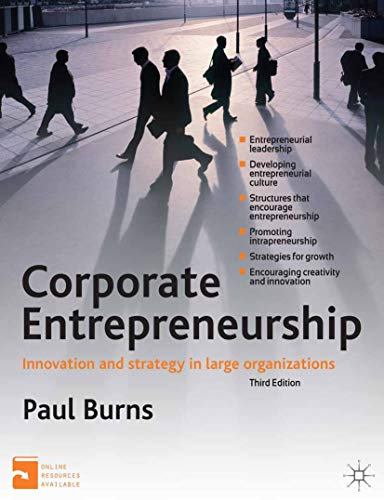 Corporate Entrepreneurship: Innovation and Strategy in Large Organizations (English Edition)