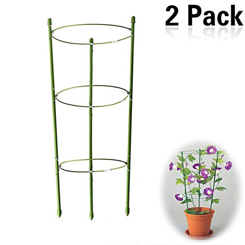yojoloin 2 pack garden plant support anello garden trellis flower acciaio inossidabile supporto arrampicata vegtables & flowers & fruit grow gabbia con 3 anelli regolabili 17.8 (2pcs)