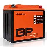 GP-PRO GB16L-B 12V 17Ah Gel-Batterie (Ähnlich YB16L-B / CB16L-B / 51911) (Wartungsfrei / Versiegelt) Akkumulator Motorrad Motorradbatterie Kawasaki GPZ 1100