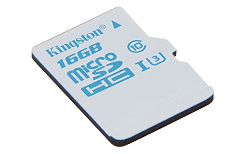 Kingston SDCAC/16GB - Tarjeta de memoria microSD de 16 GB para Action...