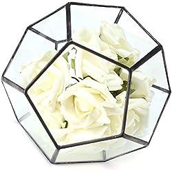 Bureze Maceta de terrario geométrico de Cristal Irregular, Ideal para Decorar tu Mesa o Plantas.