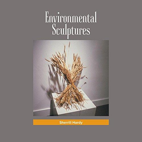 Environmental Sculptures: Sculpture Installations (English Edition) por Sherrill Hardy