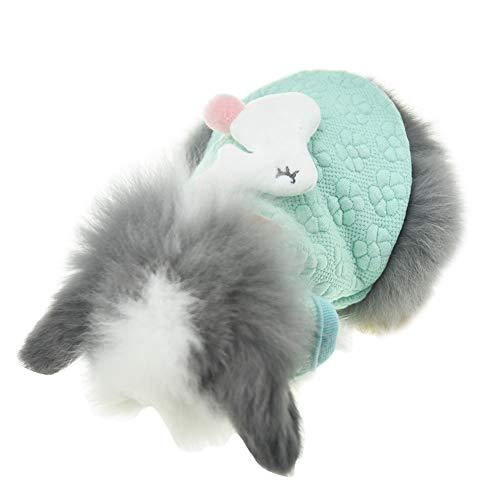 FLAdorepet süßes Häschen Kaninchen Kleidung für Kleintiere Frettchen Kostüm Meerschweinchen Zubehör