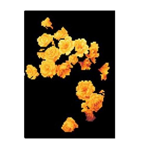 KItipeng 5D DIYPeinture en Diamant,Broderie de Diamants Point de Croix en Résine Décoration de Maison Salon Chambre Diamond Painting Kits complets DIY Peinture décorative,30 * 40cm