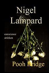 Pooh Bridge: conscience stricken by Nigel Lampard (2015-04-06)
