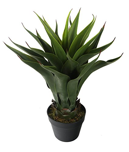 Closer 2 Nature C043W Künstliche – Agave Kunstseidenpflanze 60 cm