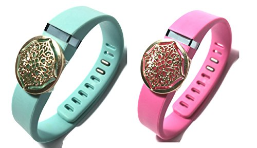 Oem-flex Band (Fashion Wristband for Fitbit Flex with Clasp Wireless Activity-fitness Band Bling Accessory- Dress Outfit.)