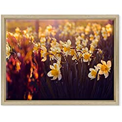 Cuadro Margaritas Flores de Colores–Abstracto Pintado Digital–Naturaleza Panorama Paisaje; Campo Florido Bouquet Moderno Sobre Lienzo Canvas