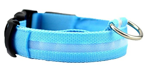 Safeinu lumière LED Pet Pendentif Collier de chien, bleu