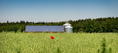 Panoramic Images - Poppy Flower in a Field and barn with solar Panels and silos in The Background Baden-Wurttemberg Germany Photo Print (30,48 x 68,58 cm) -