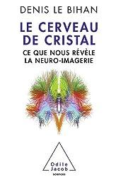 Cerveau de cristal (Le)
