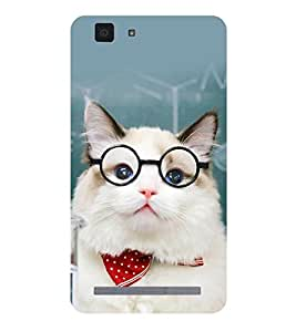 printtech Cat Teacher Back Case Cover for vivo X5Max