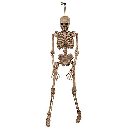 Bristol Novelty hi334Skelett, braun/beige, One Size (Für Hangman-spiele Halloween)