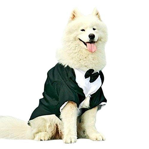 Einfach Schwanz Kostüm Katze - Legendog Kleider für Hunde, Schwanz Hochzeit Formal Hund Anzug Schwalbe Haustier Bekleidung Kostüm mit Bowtie für Großen Hund (2XL-5XL)