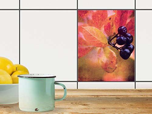 reparation-baignoire-carrelage-sticker-autocollant-art-de-tuiles-mural-design-autumn-berry-20x25-cm-