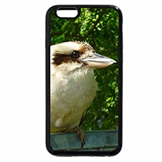 iPhone 6S Plus Case, iPhone 6 Plus Case, Australian Kookaburra